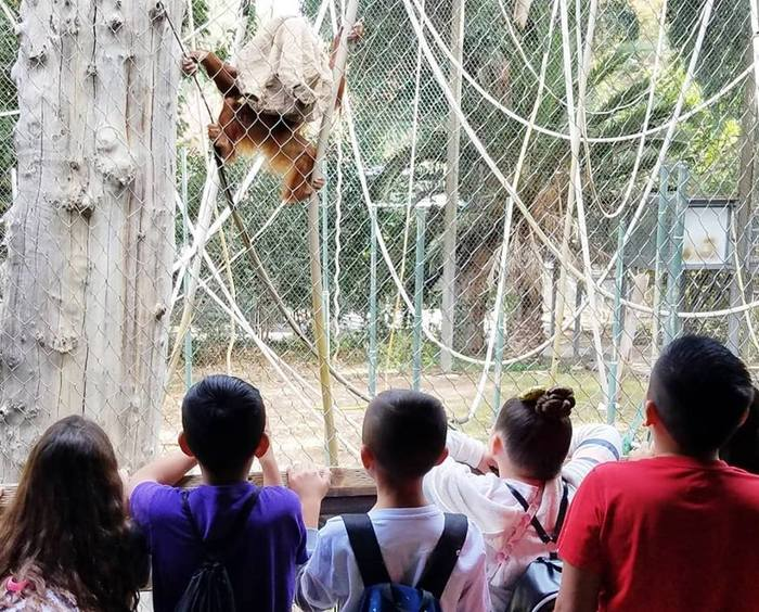 Students watching the animals