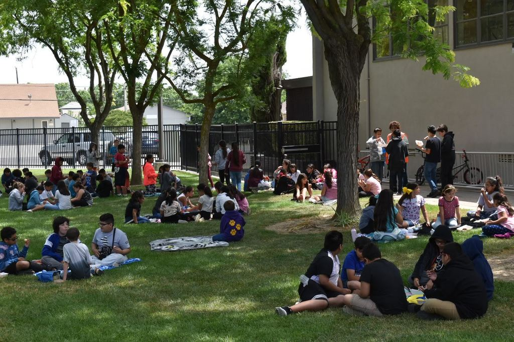 students eating BBQ on the lawn