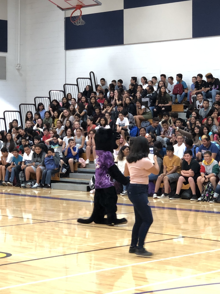 The Yolo Panther getting the crowd excited!