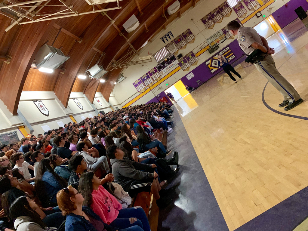 Impacted Teen Driver Assembly