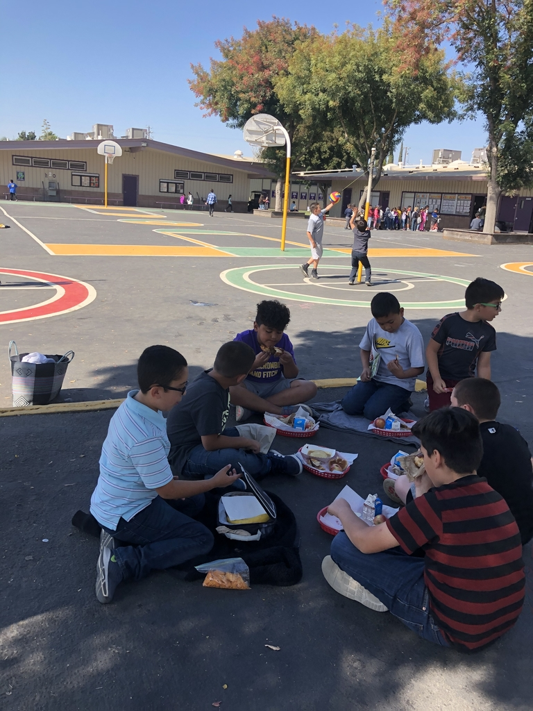 Students picnicking outside