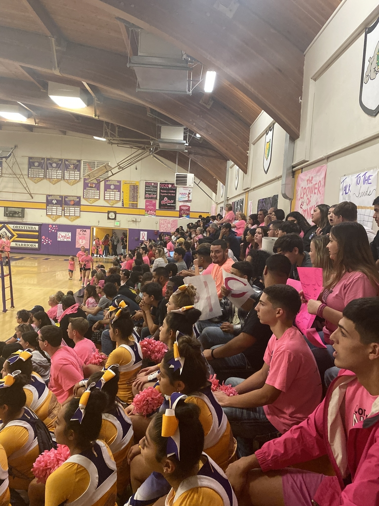 The stands are packed in support of cancer research.