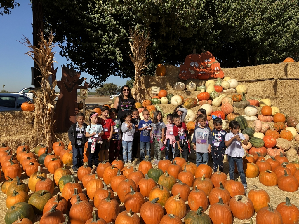Mrs. Dhaliwal's class by the pumpkins
