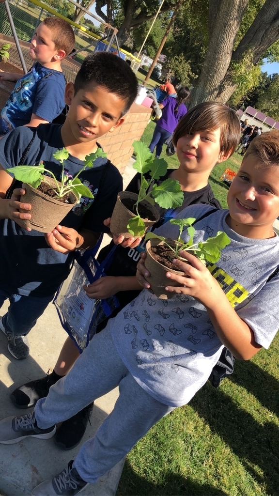 Students planting vegetables