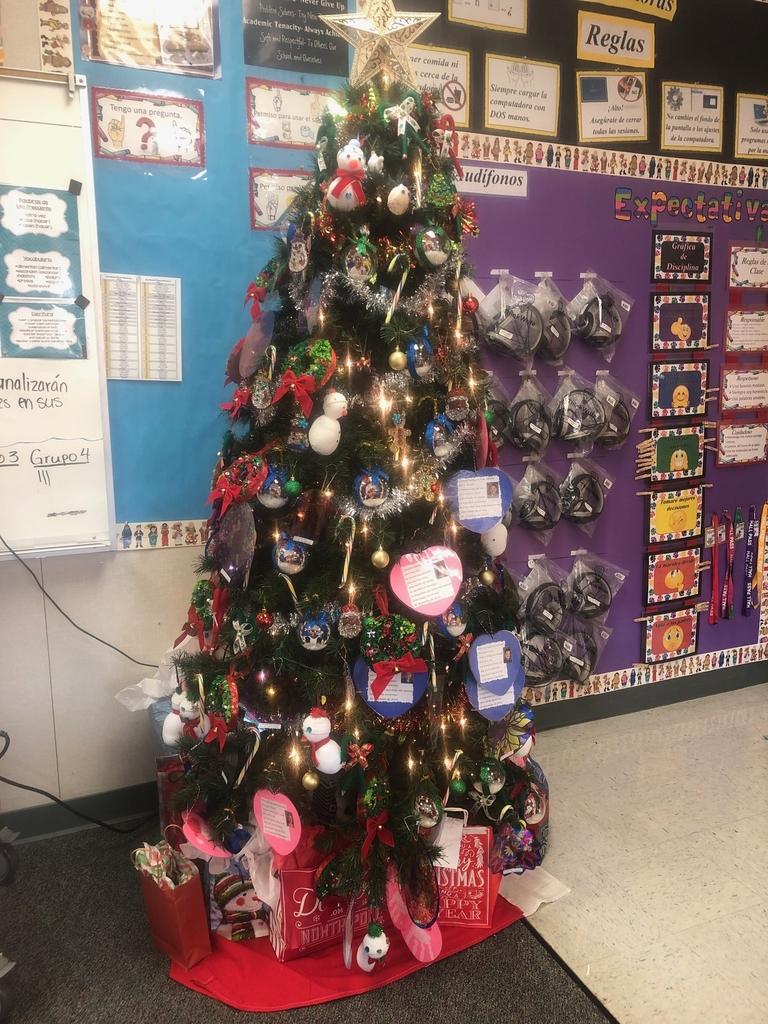 Tree decorated with students'  projects